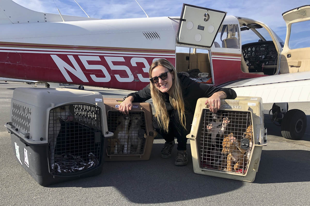 Rescuing Animal Life: Amelia Air