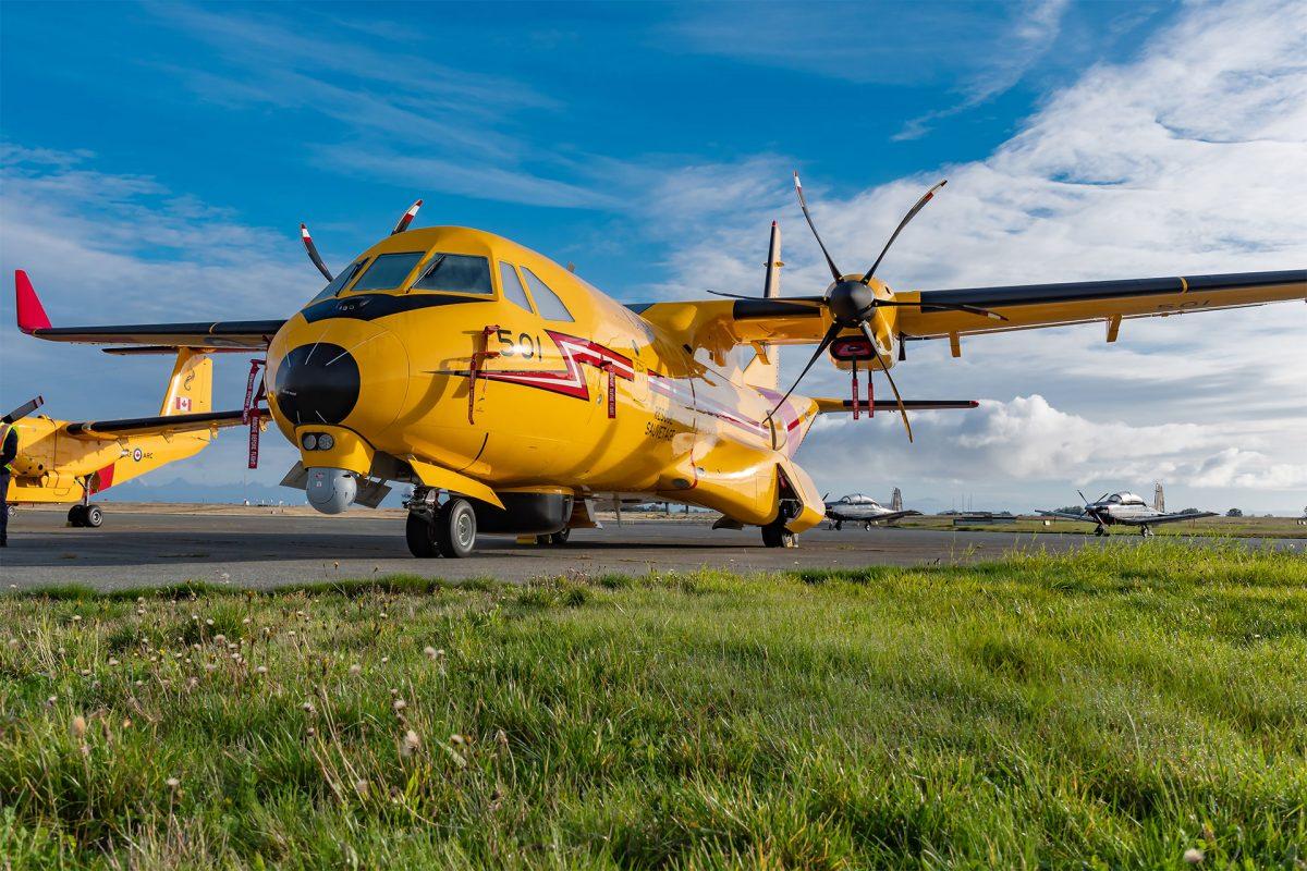 Kingfisher CC-295: The Northern Skies' King