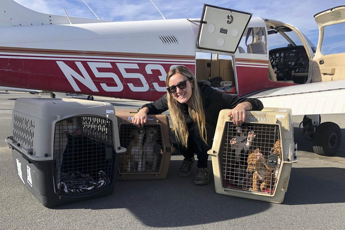 Rescuing Animal Life: Amelia Air